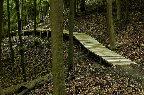 Aston Hill boardwalk